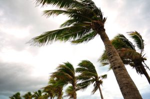 tile roofing Dallas specialists can offer you tips to protect your roof from storms